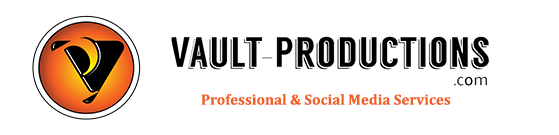 vault professional social media services